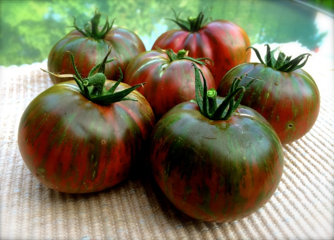 Tie-Dyed Tomatoes